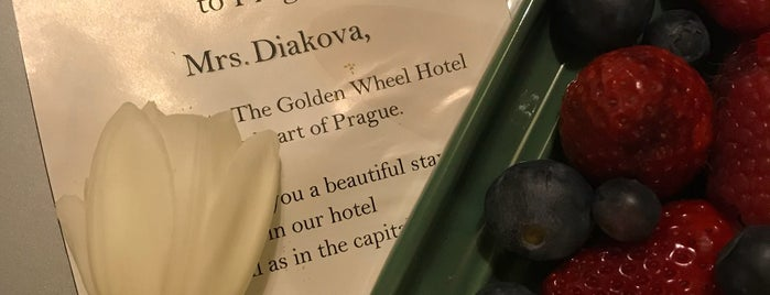 Golden Well Hotel is one of Прага.