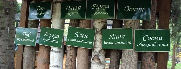 Кузьминский мини-зоопарк is one of Locais curtidos por Ekaterina.