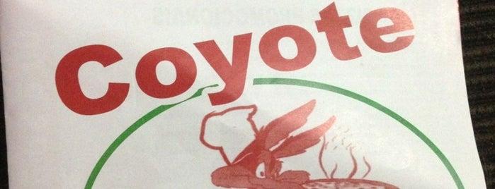 Pizzaria Coyote is one of Orte, die Fabio gefallen.
