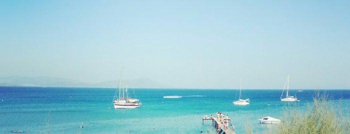 Ilayda Beach is one of Beğenmedikleri Tavsiyeleri Şikayet Eden Mekanlar.