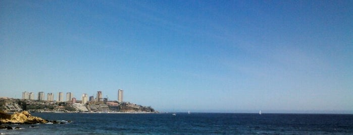 Playa Amarilla is one of Locais curtidos por Pedro.