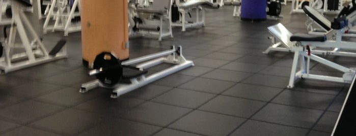 24 Hour Fitness is one of Gyms.