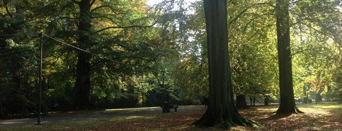 Parc de Mariemont is one of Lieux qui ont plu à Gordon.