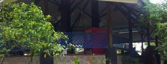Rumah Makan Suranadi is one of best place in Lombok.