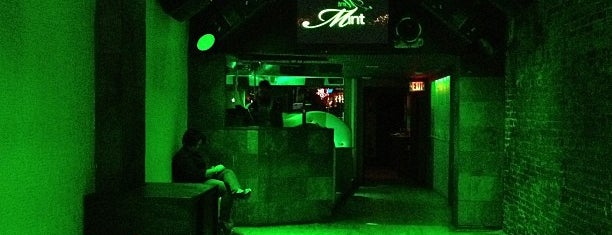 Mint Nightclub is one of Rover's favorite spots.