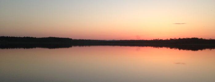 Торбеево озеро is one of Orte, die AleXandra gefallen.
