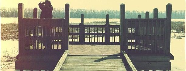Minnesota Valley Wildlife Refuge Fishing Dock is one of Angie 님이 저장한 장소.