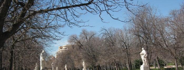 Paseo de las Estatuas is one of Ruta Colorea Madrid para conocer el Retiro.