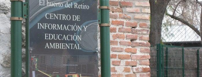 El huerto del Retiro is one of Ruta Colorea Madrid para conocer el Retiro.