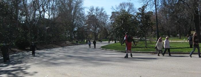 Paseo Coches is one of Ruta Colorea Madrid para conocer el Retiro.
