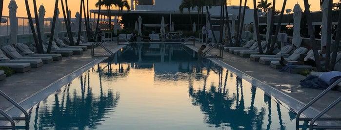 Miami with Katie 🧜🏻♀️🌺🌴