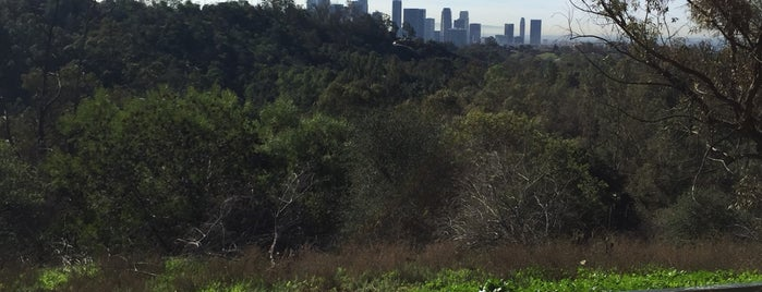 Elysian Park Trail is one of Locais curtidos por Shelya.