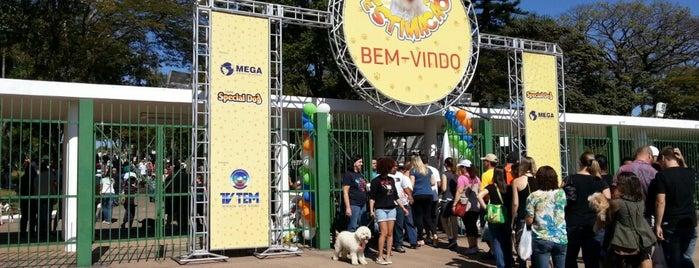 Parque Comendador Antônio Carbonari (Parque da Uva) is one of Fabio Henrique 님이 좋아한 장소.
