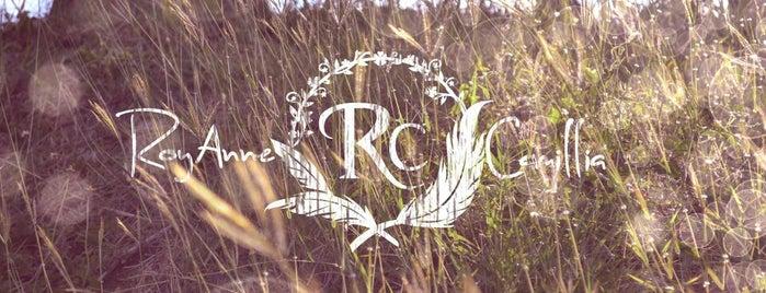 RoyAnne Camillia Couture is one of Orte, die RoyAnne gefallen.