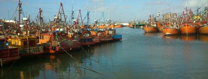 Puerto de Mar del Plata is one of Posti che sono piaciuti a Mks.