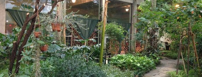 Зимний Сад / Winter Garden is one of Еда 2.