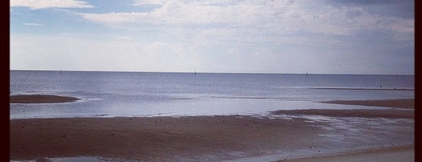Biloxi Beach is one of Bryanさんのお気に入りスポット.