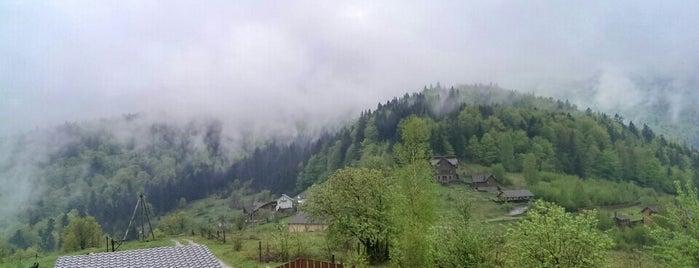 Вершина Яремче is one of Orte, die Ирина gefallen.