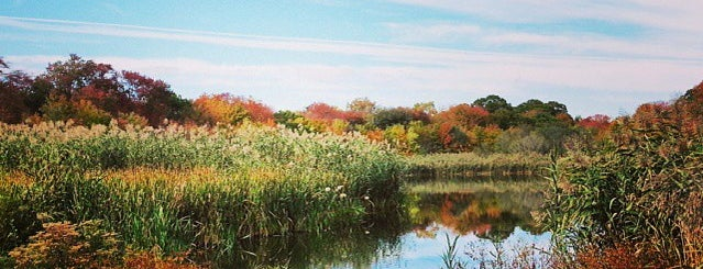 Massapequa Preserve is one of Day Trips from Brooklyn.