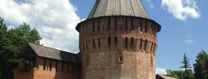 Smolensk is one of Лизаветаさんの保存済みスポット.