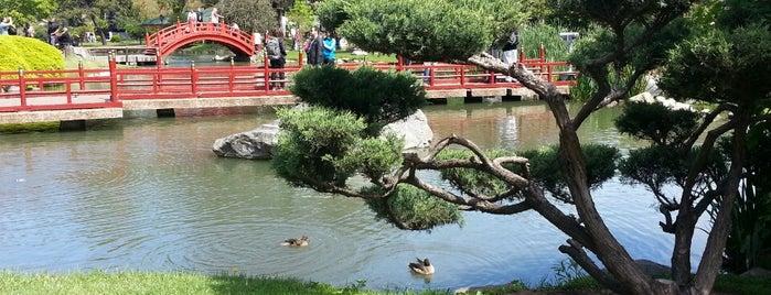 Jardín Japonés is one of Outdoor Activity in BAires.