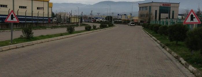 Kemalpaşa Organize Sanayi Bölgesi is one of Veni Vidi Vici İzmir 2.