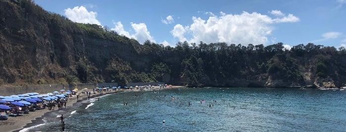 Spiaggia Pozzovecchio is one of Procida.