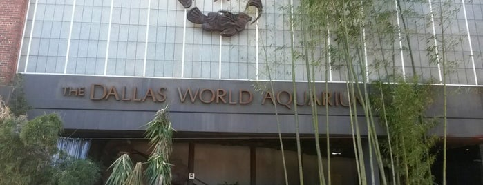 Dallas World Aquarium is one of 67 Things to do in Dallas Before You Die or Move.