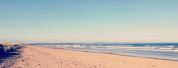 West Sands Beach is one of Euan : понравившиеся места.