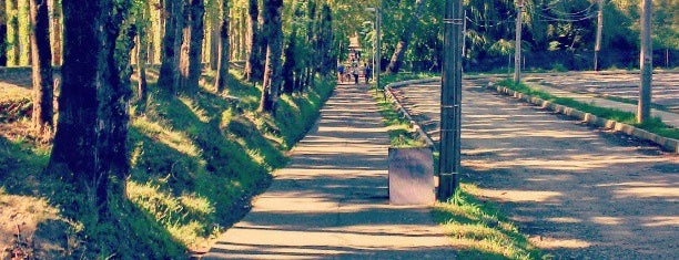 Universidad Austral de Chile - Campus Isla Teja is one of Francisco : понравившиеся места.