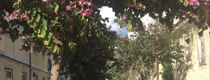 Outdoors - Lisbon