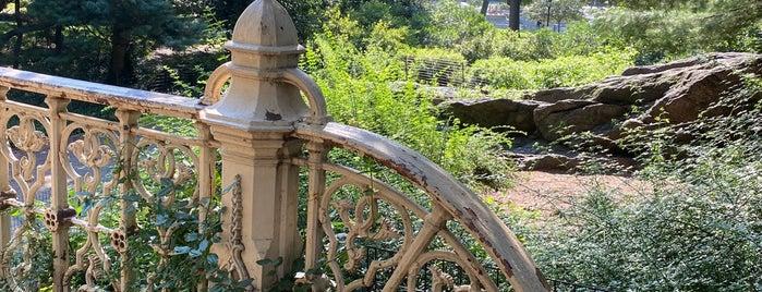Pinebank Arch is one of NY'ın En İyileri 🗽.