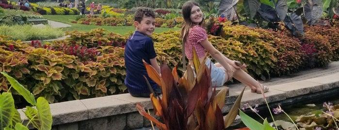 Sunken Gardens is one of North America.