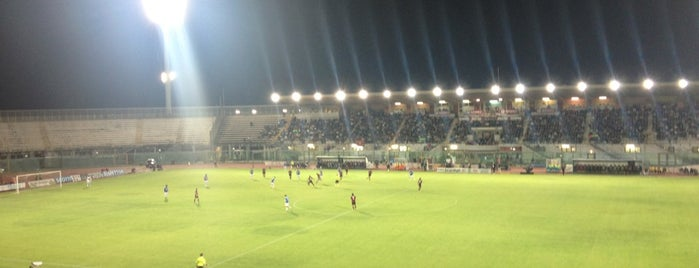 Stadio Armando Picchi is one of Lega Italia Serie A TIM Stadium (Season 2013-2014).