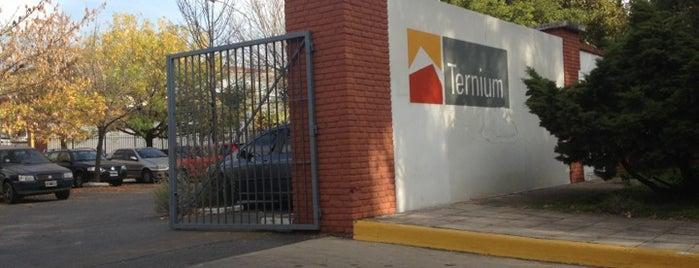 Ternium Siderar is one of My sites.
