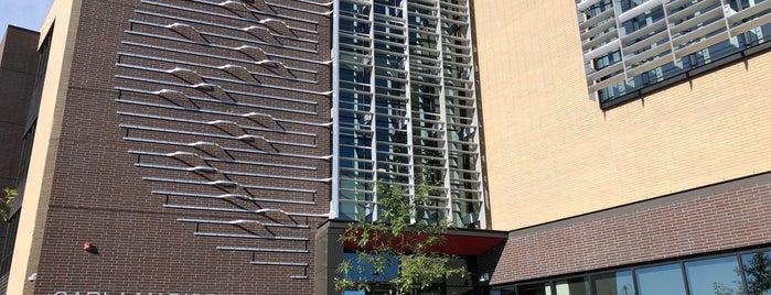 Carla Madison Recreation Center is one of Karen'in Beğendiği Mekanlar.