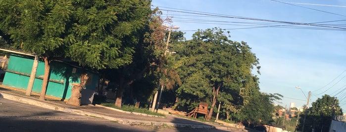 Henrique Jorge is one of Locais.