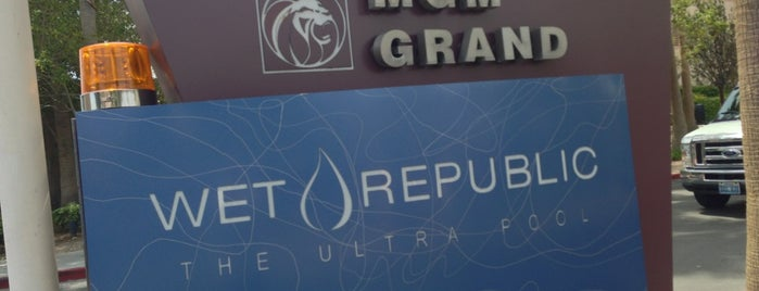 Wet Republic Ultra Pool is one of PEOPLE Badges.