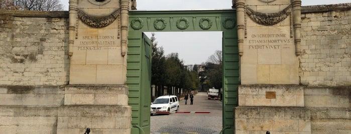 Cimitero del Père-Lachaise is one of Paris Mon Amour!.
