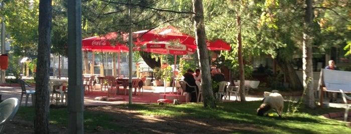 Vakıf Park is one of Serdarさんの保存済みスポット.