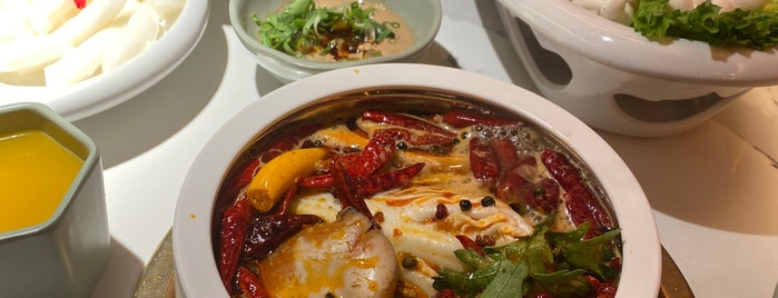 Da Yu Hot Pot 大渝火锅 is one of Want to try.