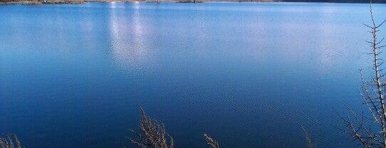 Святошинське озеро is one of Оксанаさんの保存済みスポット.