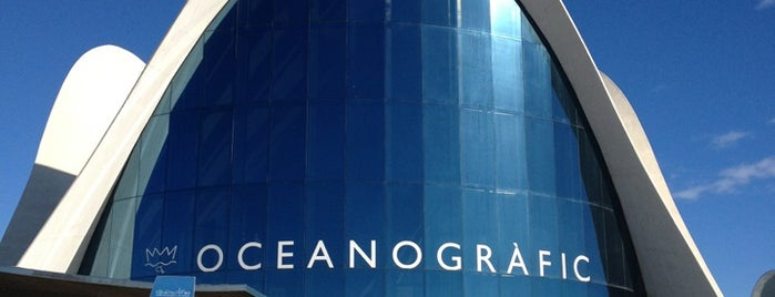 L'Oceanogràfic is one of Europa 2013.