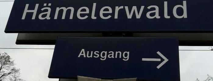 Bahnhof Hämelerwald is one of Bahnhöfe besucht !.