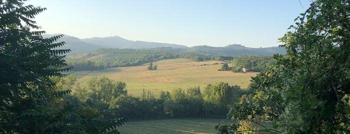 Castelnuovo Berardenga is one of Comuni del Chianti Classico.