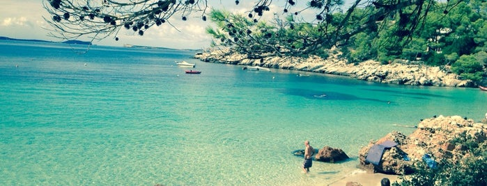 Cala Salada is one of Ibiza, baby!.