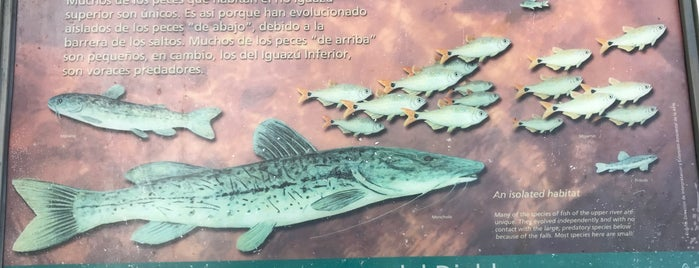 Puerto Canoas is one of Lugares favoritos de Luis Gustavo.