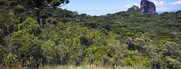 Trilha do Mirante da Pedra do Baú is one of Santo António do Pinhal, SP.