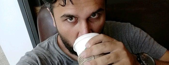 Starbucks is one of Seda 님이 좋아한 장소.