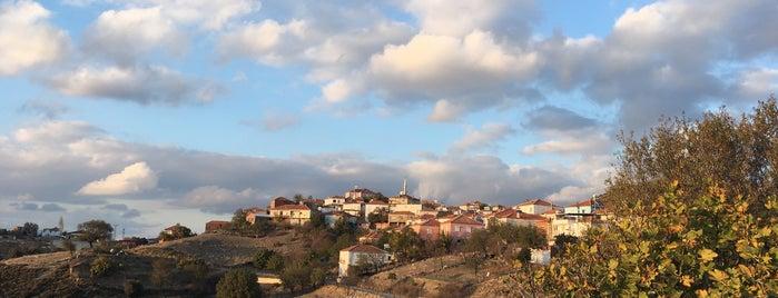 Beyler Köyü is one of Seferihisar.
